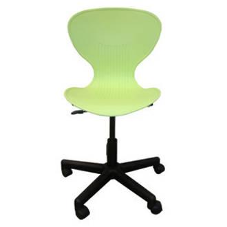 Lime  Echo Chair