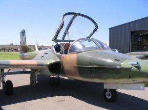 A37_Dragonfly.JPG