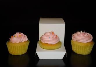 Single Cupcake White Box