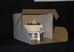 Transit cake box