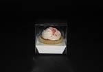 Single Cupcake PVC Box