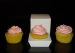 Single Cupcake White Box