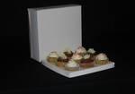 "9 - Cupcake White Box 60mm Standard Insert - 10 x 10 x 4"""