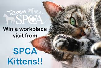 CMDPrint SPCA