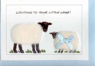 Welcome To Your Little Lamb Gift Card - Boy