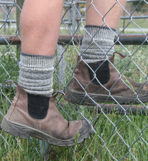 merino wool socks work tough cosy toes NZ
