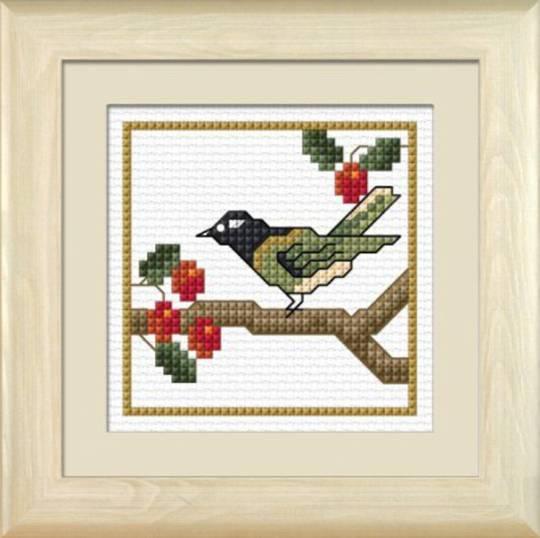 NZ Birds - Hihi