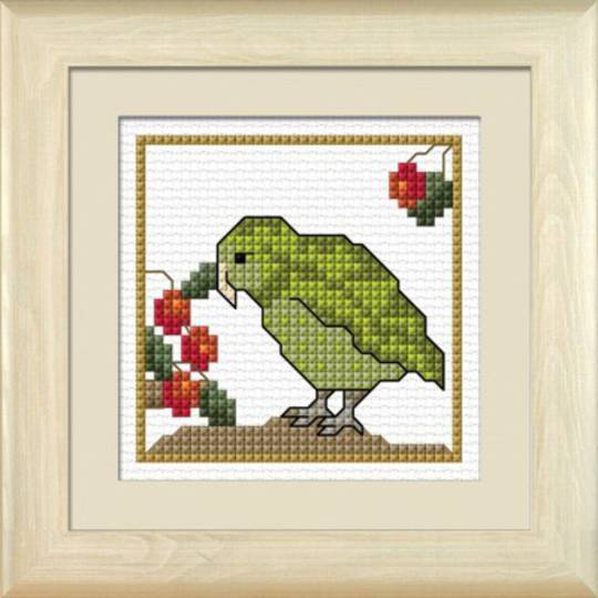 NZ Birds - Kakapo