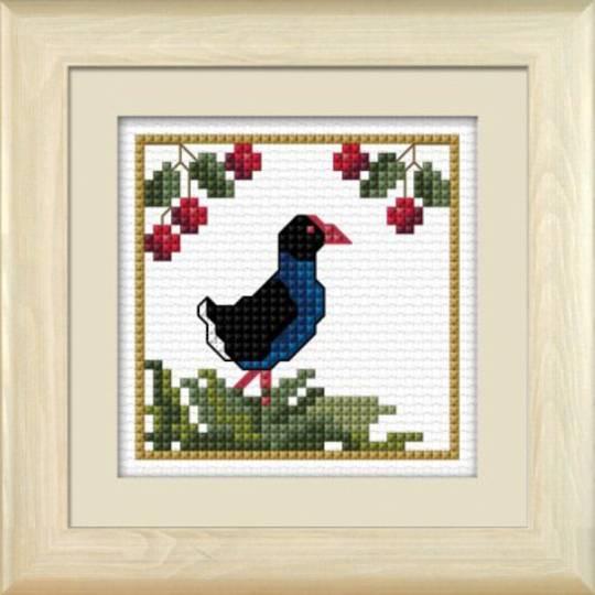 NZ Birds - Pukeko