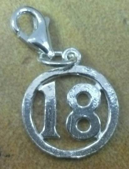 18 in Circle Pendant with Clip
