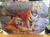 3D 2 Tigers Picture