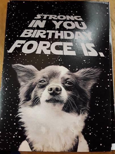Dog Birthday Card and Envelope