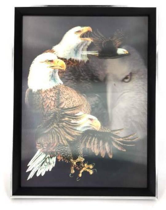4D Eagle Picture
