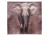 60cm Elephant with Mandala Canvas