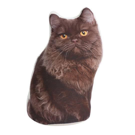 Adopt A Doorstop Cat Coco