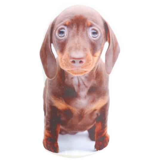 Adopt A Doorstop Puppies Oscar