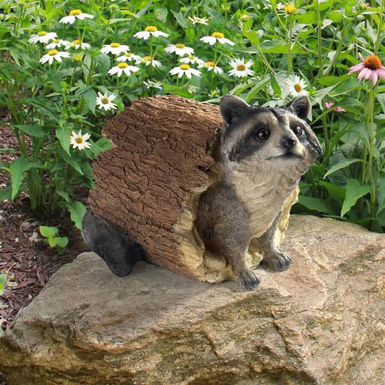 Bandit, the Raccoon Statue