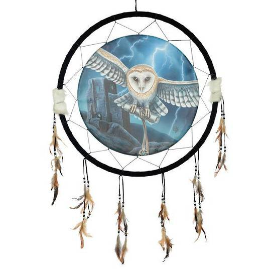 Extra Large Heart of the Storm Owl Dreamcatcher by Lisa Parker