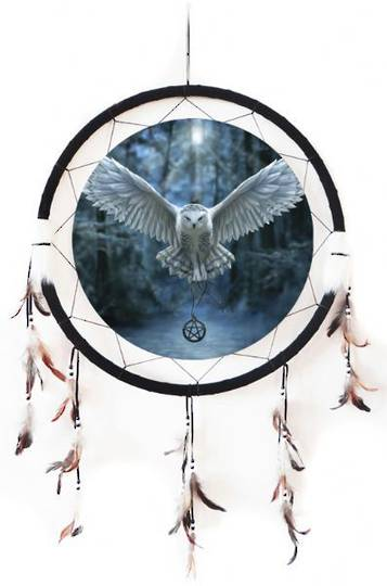 Extra large DreamCatcher Awaken Your Magic Owl
