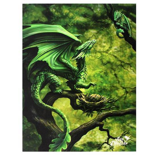 Small Forest Dragon Canvas