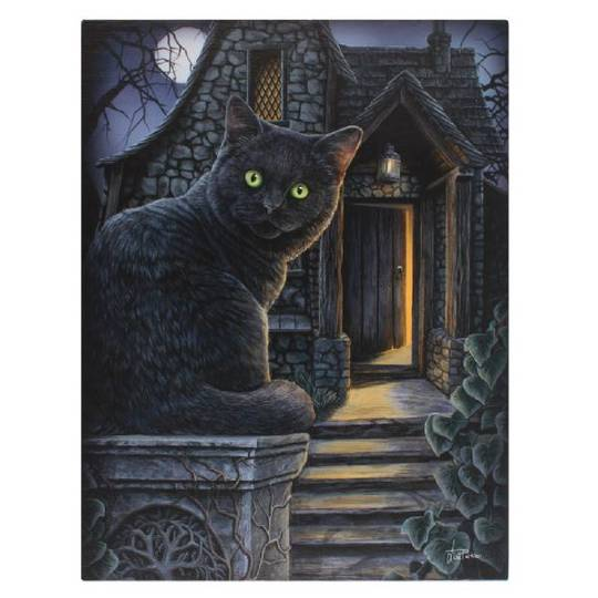 Small What Lies Within Cat Canvas