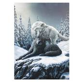 Snow Kisses Wolf Canvas