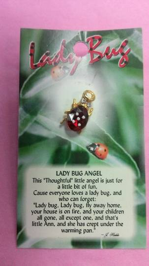 Lady Bug Angel Brooch