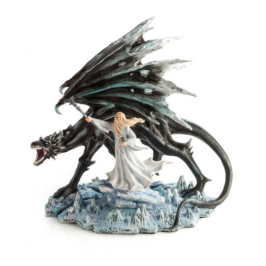 White Wizard with Black Dragon