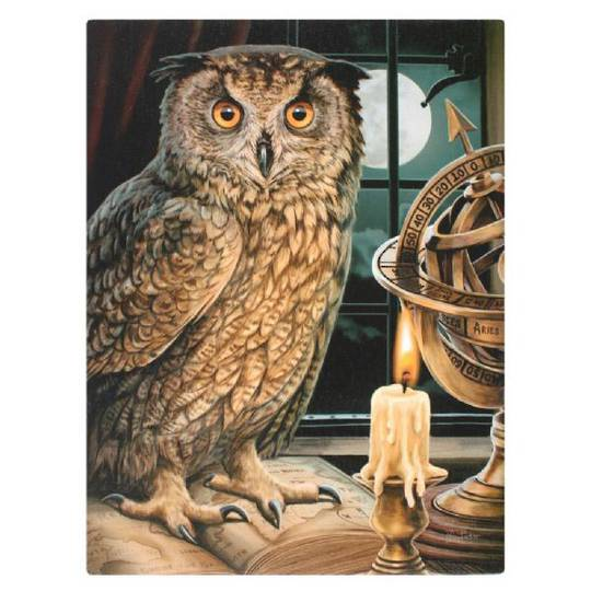 Small The Astrologer Owl Canvas
