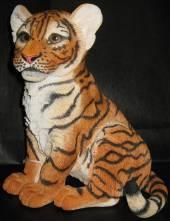 Baby tiger cub