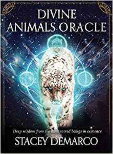 Divine Animal Oracle by Stacey Demarco