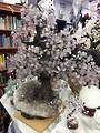62cms High Amethyst Crystal Tree on Amethyst/Smokey Quartz Base