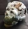 Ocean Jasper Crystal Skull