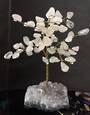 Rose Quartz Tree on Amethyst Druzy Base