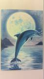 Dolphin Card and Envelope