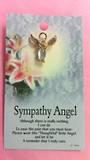 Sympathy Angel Brooch