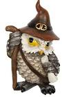 Old Wizard Owl With Scroll