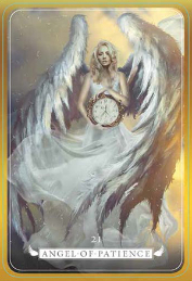 angel213-858