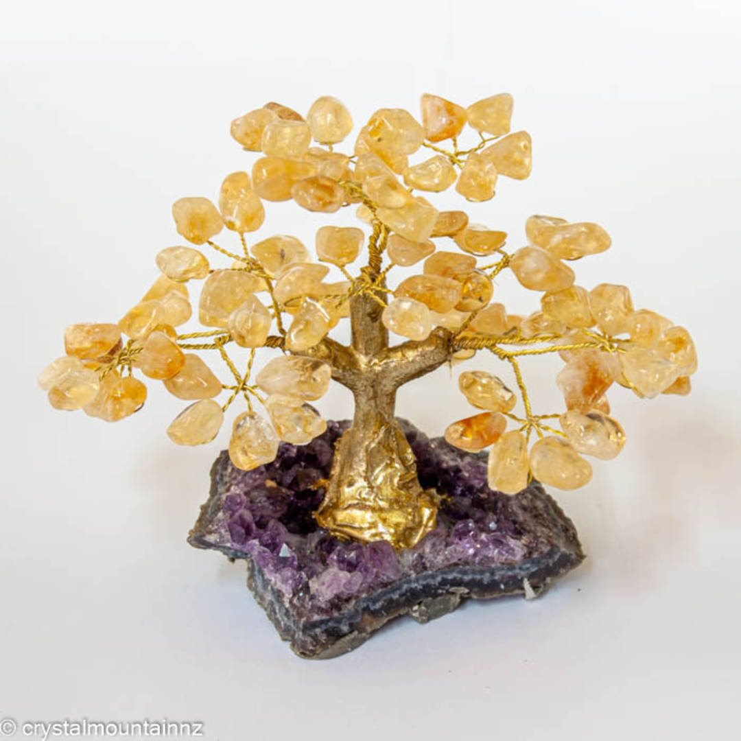 Citrine Tree with Amethyst Druze Base