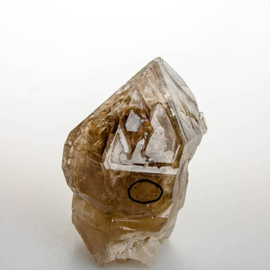 Natural Citrine Elestial Quartz Scepter with Fluid Inclusion (Enhydro)
