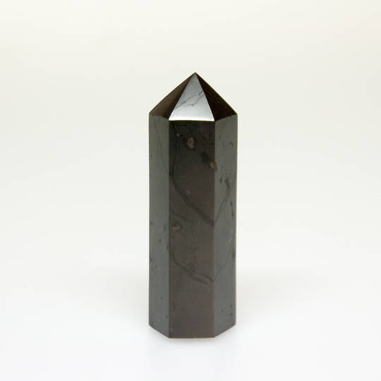 Shungite Polished Point