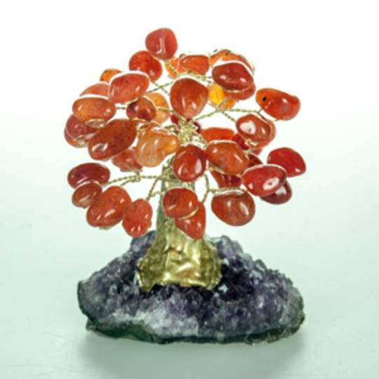 CarnelianTree