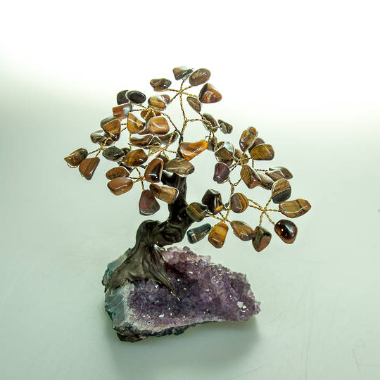Tigers Eye Tree