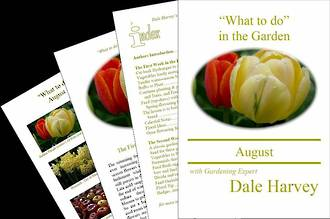 """""""What to do"""" in the Garden for August"""