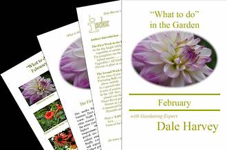 """""""What to do"""" in the Garden for February"""