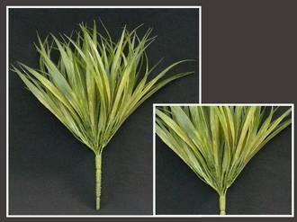 Grass – Green Mondo Grass