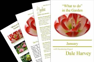 """""""What to do"""" in the Garden for January"""