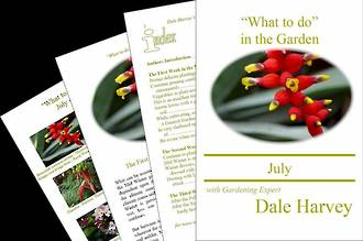 """""""What to do"""" in the Garden for July"""