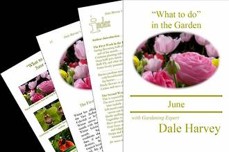 """What to do"" in the Garden for June"