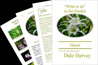 """""""What to do"""" in the Garden for March"""